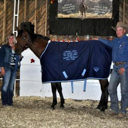 Paystreak - 2 Year Old sold for $20,000 at auction in September 2013.
