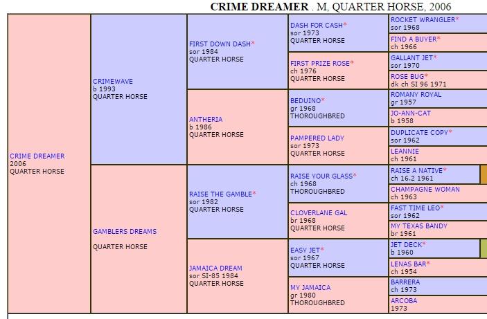 CrimeDreamer