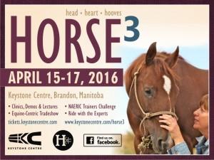 Horse 3 @ Keystone Centre | Brandon | Manitoba | Canada