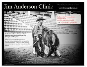 Jim Anderson Horsemanship / Liberty Clinic @ Bar Diamond L Performance Horses